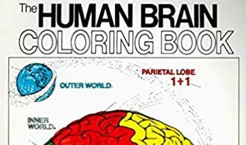 The Human Brain Course