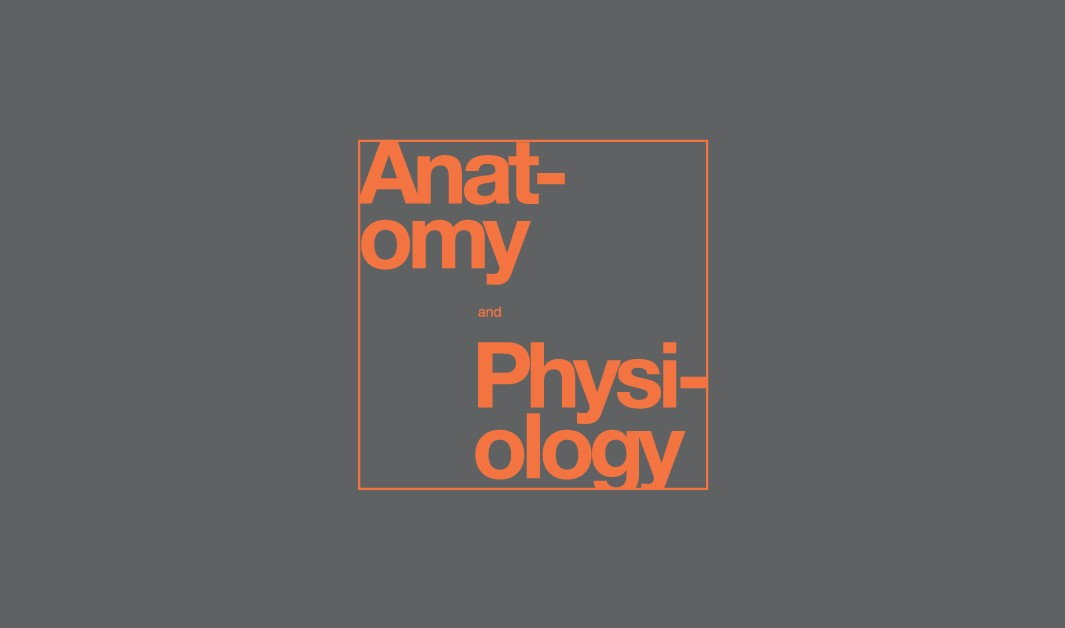 Anatomy/Physiology Basics Course